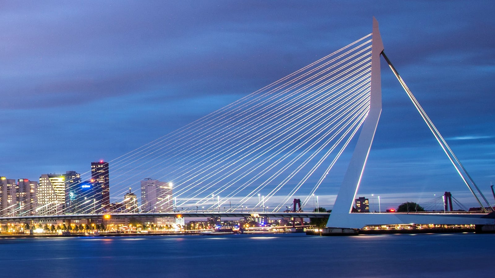 Erasmusbrug - Rotterdam - CitySpotters