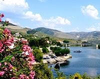 Douro-vallei dagtour