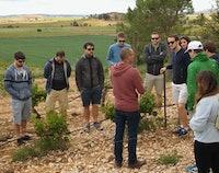 Dagtrip Valenciaanse Wijngaarden & Wijnproeverij